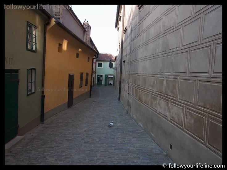 Einsame Taube, Goldenes Gässchen, Prag